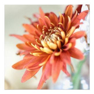 Orange Flower Art Photo