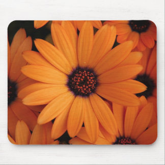 Orange Flowers Mouse Mat