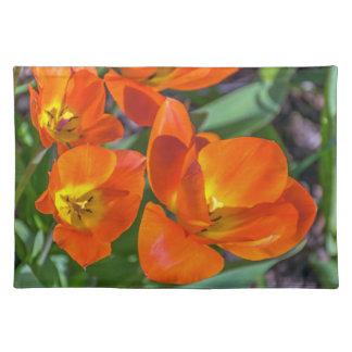Orange flowers placemat
