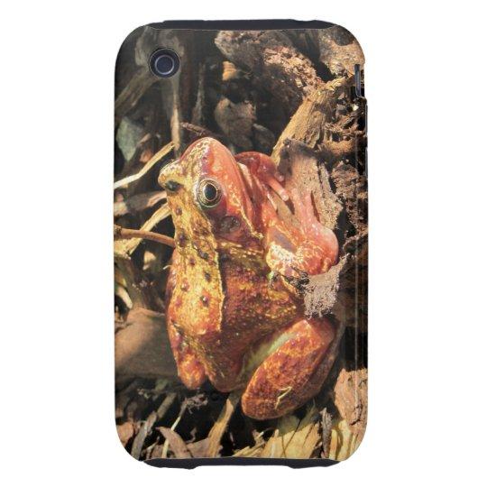 Orange Frog iPhone 3G/3GS Tough Case