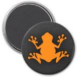 Orange Frog Magnets