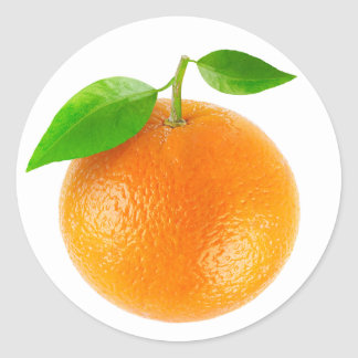 Orange fruit classic round sticker