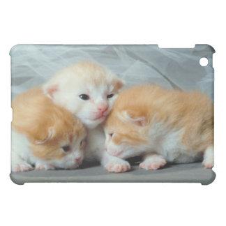 Orange Fur Kittens iPad Mini Case