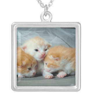 Orange Fur Kittens Silver Plated Necklace