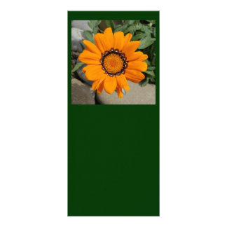 Orange Gazania Flower With Natural Background Rack Card Template