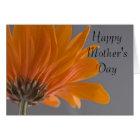 Orange Gerber Daisy Flower Happy Mother's Day Card