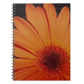 Orange Gerber Daisy Spiral Notebook
