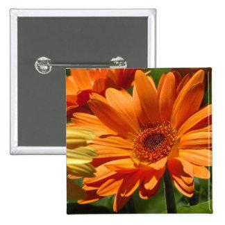 Orange Gerbera 15 Cm Square Badge