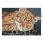 Orange Ginger Tabby Sleeping Cat Painting Art Cards