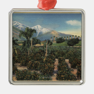 Orange Grove Scene with Snow Capped Mts Christmas Ornament