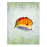 Orange Hedgehog Postcard