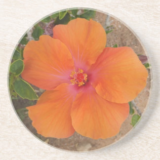 Orange Hibiscus coaster