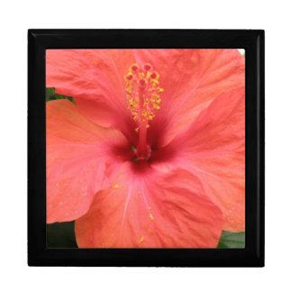 Orange Hibiscus Flower Macro Gift Box