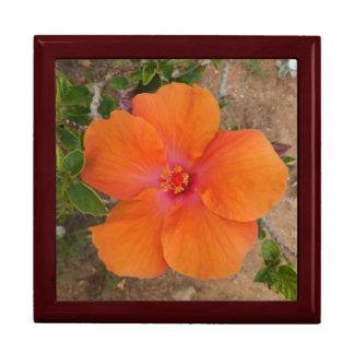 Orange Hibiscus gift / jewelry box