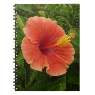 Orange Hibiscus Notebook