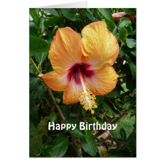 Orange Hibiscus Tropical Flower Birthday Template Card