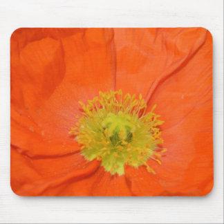 Orange Iceland Poppy III Mouse Mat