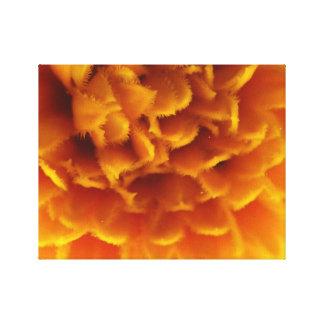 Orange in Bloom Canvas Print