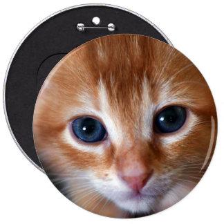 Orange Is The New Cat 6 Cm Round Badge
