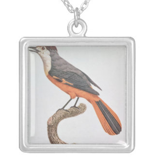 Orange Jay Silver Plated Necklace