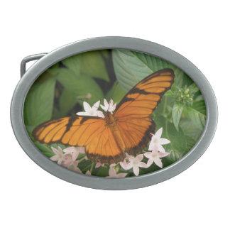 Orange Julia Butterfly Belt Buckle