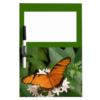 Orange Julia Butterfly Memo Board