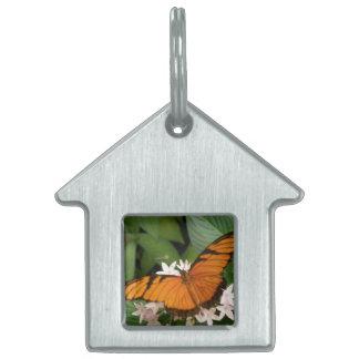 Orange Julia Butterfly Pet Tag