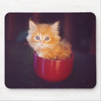 Orange Kitten In A Red Mug Mouse Pad