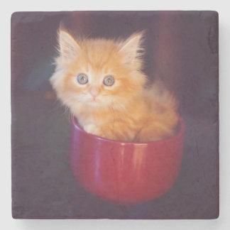 Orange Kitten In A Red Mug Stone Coaster