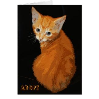 Orange Kitten Notecard