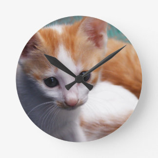 Orange Kitten Photograph Round Clock