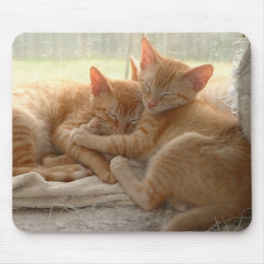 Orange Kittens Mouse Pad