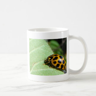 Orange Lady Bettle Coffee Mugs