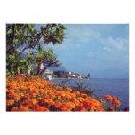 Orange Lake Geneva, Montreux, Switzerland flowers Custom Invitations