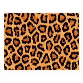 Orange leopard skin print postcard