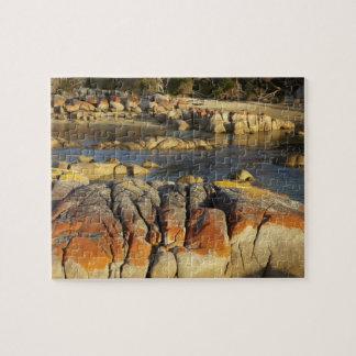 Orange Lichen on Rocks, Binalong Bay, Bay of Jigsaw Puzzle