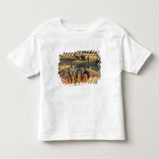 Orange Lichen on Rocks, Binalong Bay, Bay of Toddler T-Shirt