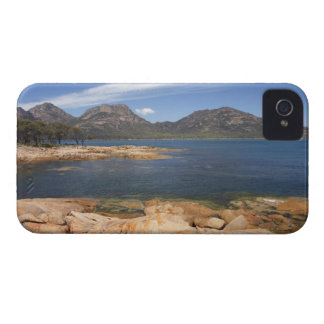 Orange Lichen on Rocks, Coles Bay, and The iPhone 4 Case-Mate Case