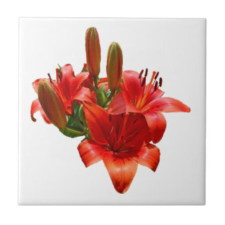Orange Lily Blossoms - Right Facing Small Square Tile