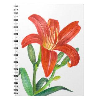 Orange Lily Botanical Illustration Spiral Notebook