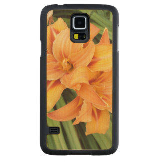 Orange Lily Carved Maple Galaxy S5 Case