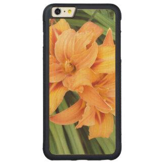 Orange Lily Carved Maple iPhone 6 Plus Bumper Case