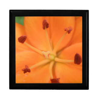 Orange Lily Floral Gift Box