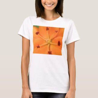 Orange Lily Floral Ladies T Shirt