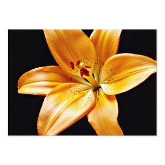 Orange lily  flowers 13 cm x 18 cm invitation card