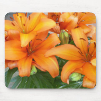 Orange Lily Flowers Mouse Mat