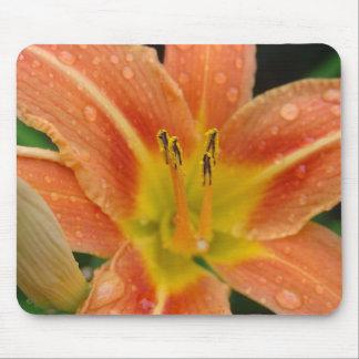 Orange Lily Mousepad