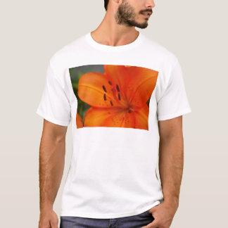 Orange Lily T-Shirt