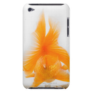 Orange lionhead goldfish (Carassius auratus) 2 iPod Touch Case-Mate Case