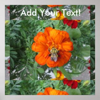 Orange Marigold Bee Flower Poster